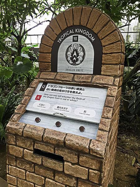 名護鳳梨公園,水果樂園-21.jpg