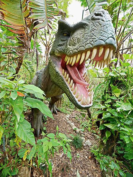 沖繩恐龍,dino恐龍公園-10.jpg