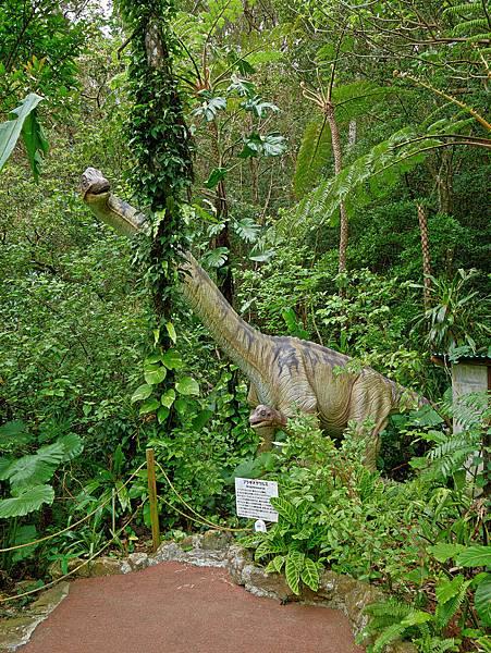 沖繩恐龍,dino恐龍公園-12.jpg