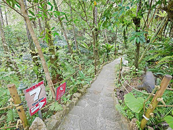 沖繩恐龍,dino恐龍公園-18.jpg