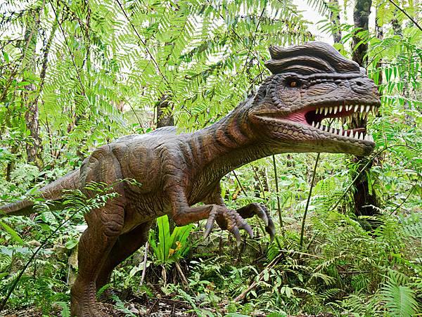 沖繩恐龍,dino恐龍公園-19.jpg