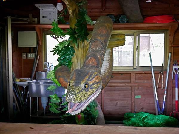 沖繩恐龍,dino恐龍公園-33.jpg