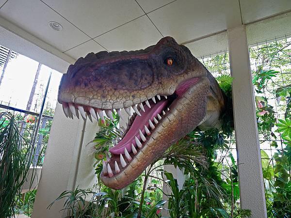 沖繩恐龍,dino恐龍公園-40.jpg