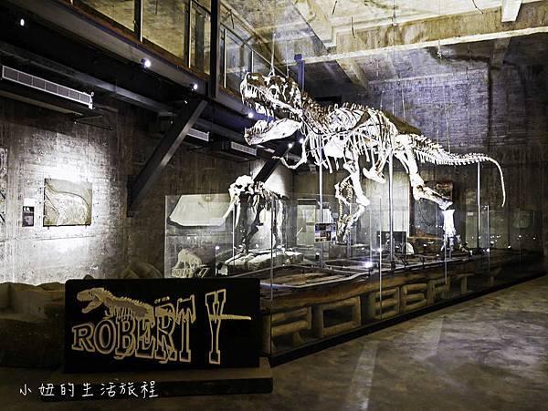 宜蘭蘇澳Robert-Y瘋狂夢想博物館-14.jpg