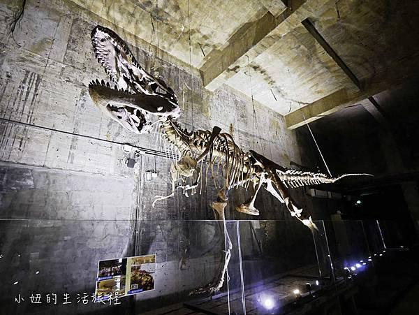 宜蘭蘇澳Robert-Y瘋狂夢想博物館-16.jpg