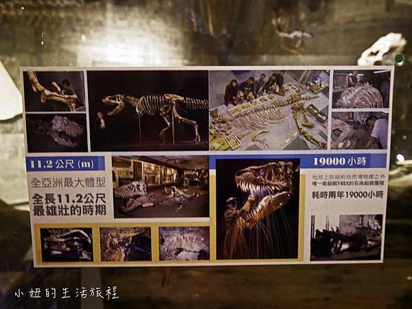 宜蘭蘇澳Robert-Y瘋狂夢想博物館-18.jpg