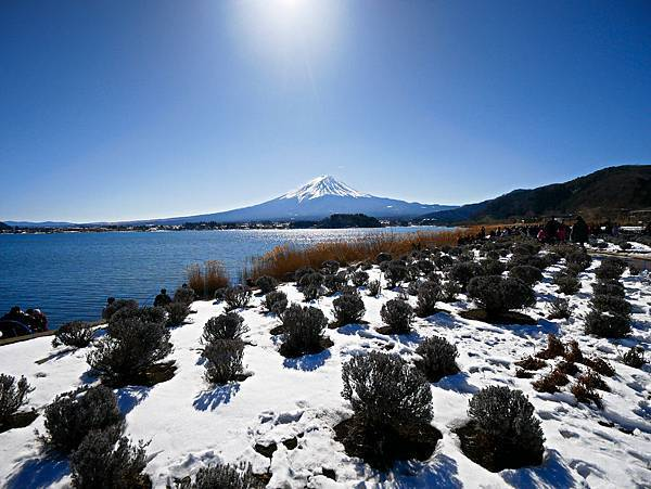 東京,採草莓,富士山,河口湖,纜車-21.jpg