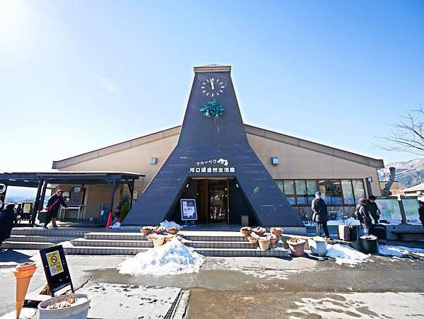 東京,採草莓,富士山,河口湖,纜車-22.jpg