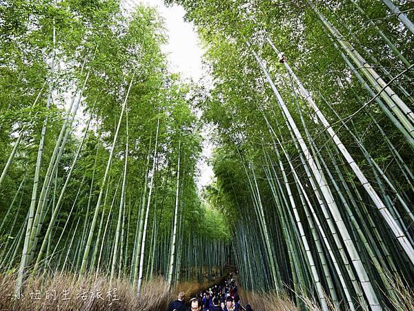 京都嵐山景點-30.jpg