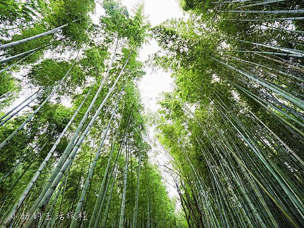 京都嵐山景點-32.jpg