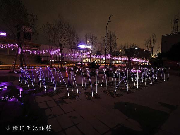 2019 台北燈節-16.jpg