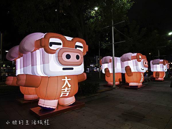 2019 台北燈節-34.jpg