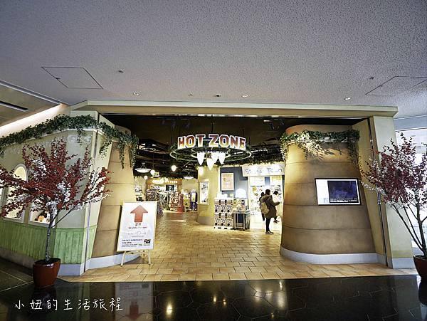 羽田機場必買伴手禮,飛機艙,看飛機 (35-64).jpg