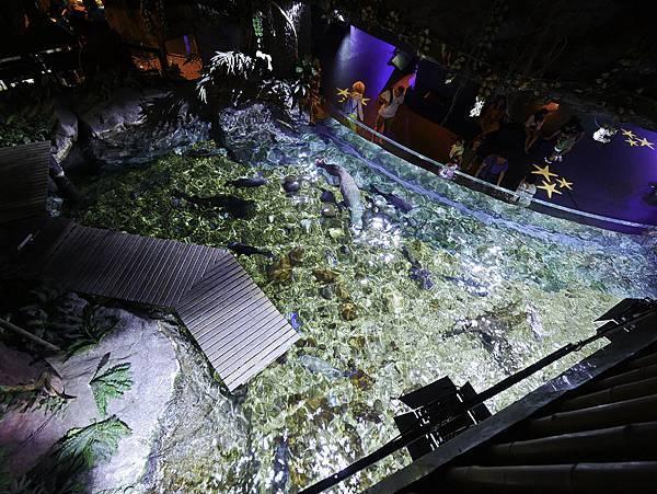 曼谷 海洋公園-23.jpg