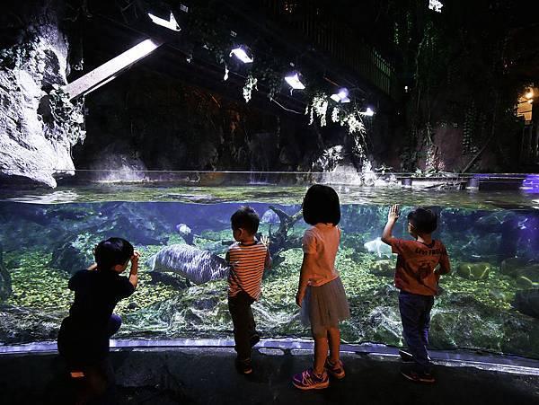 曼谷 海洋公園-32.jpg