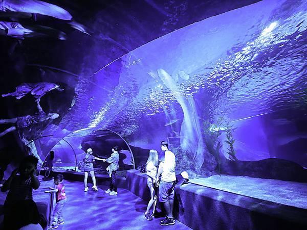 曼谷 海洋公園-36.jpg