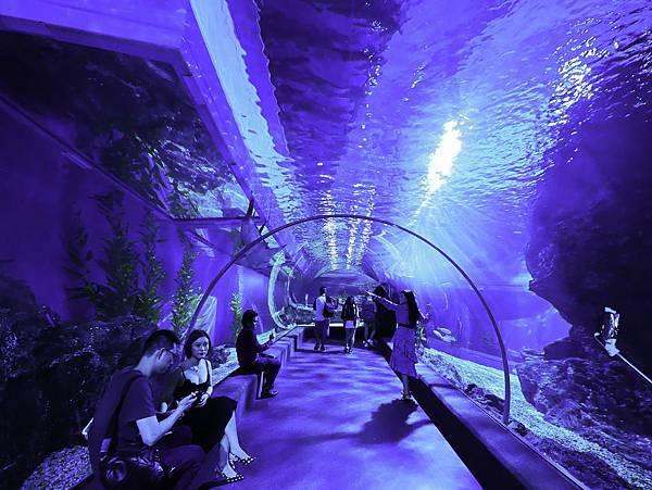 曼谷 海洋公園-38.jpg