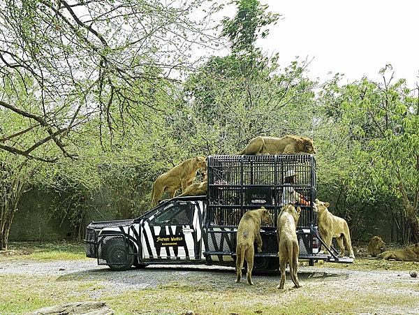 曼谷 動物園-13.jpg