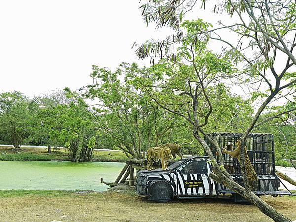 曼谷 動物園-15.jpg