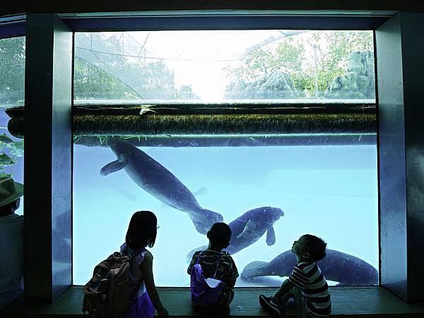 曼谷 動物園-26.jpg