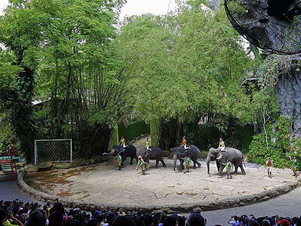 曼谷 動物園-30.jpg