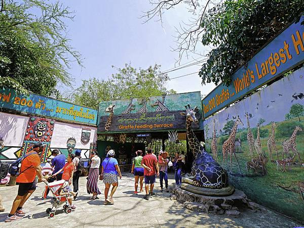 曼谷 動物園-31.jpg