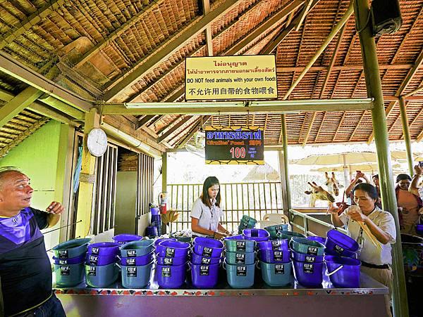 曼谷 動物園-33.jpg