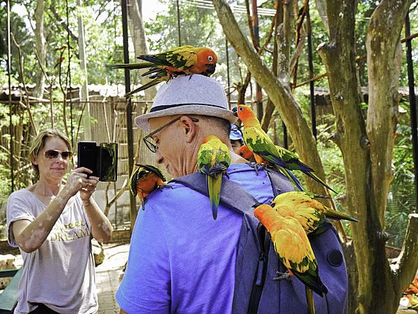 曼谷 動物園-47.jpg
