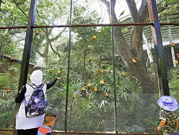 曼谷 動物園-49.jpg