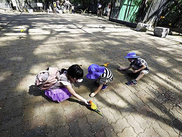 曼谷 動物園-50.jpg