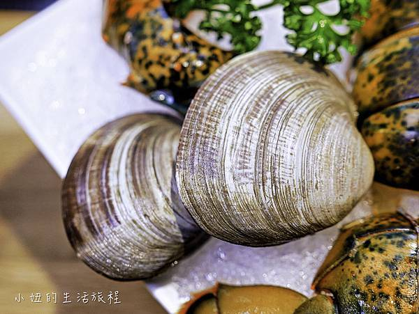 故意火鍋,故意鍋物,東區平價-32.jpg