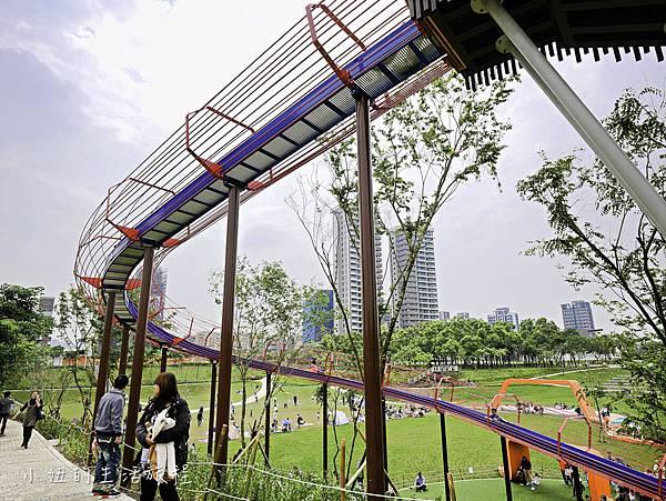 風禾公園,桃園,滾輪溜滑梯-4.jpg