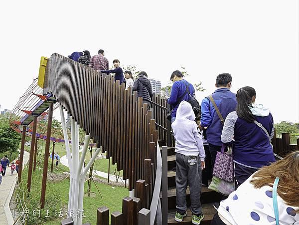 風禾公園,桃園,滾輪溜滑梯-5.jpg