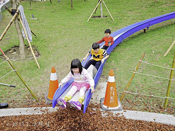 風禾公園,桃園,滾輪溜滑梯-12.jpg