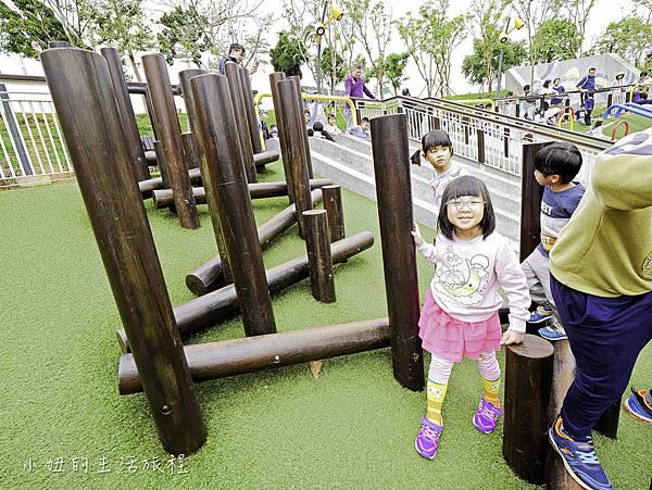 風禾公園,桃園,滾輪溜滑梯-15.jpg