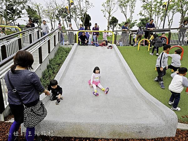 風禾公園,桃園,滾輪溜滑梯-19.jpg