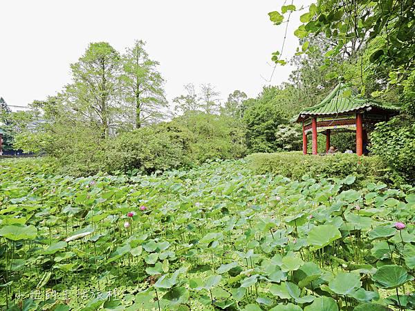 品陽大苑,台北-48.jpg