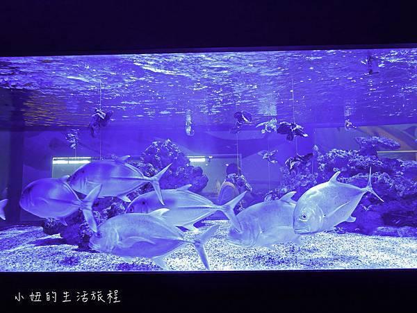 宜蘭礁溪景點-25.jpg