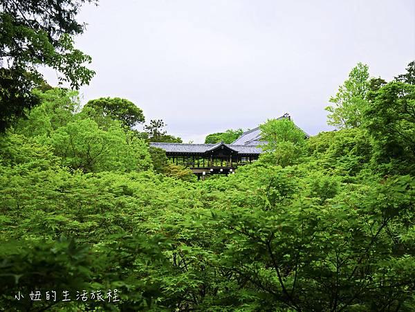 京都大阪觀光一日券二日券-35.jpg