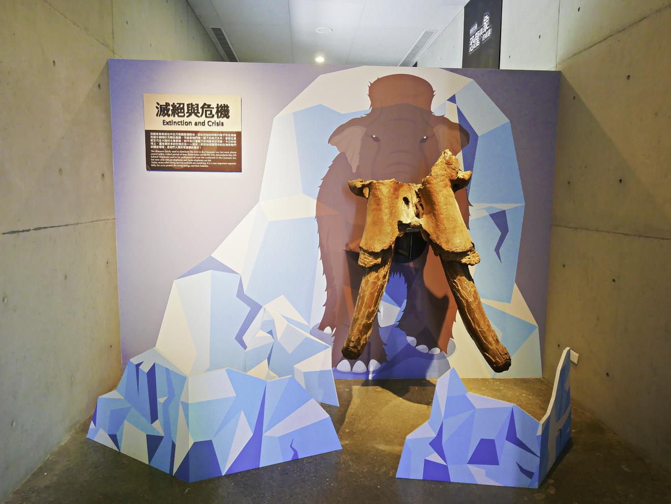 臺南左鎮化石園區-29.jpg