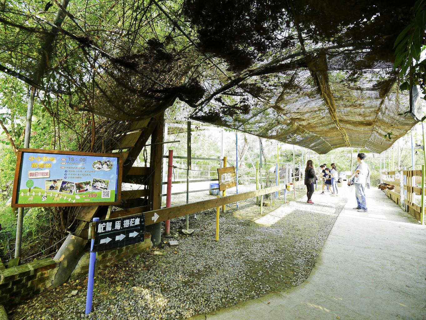 樹谷生活科學館,樹谷農場,樹谷體驗場-53.jpg
