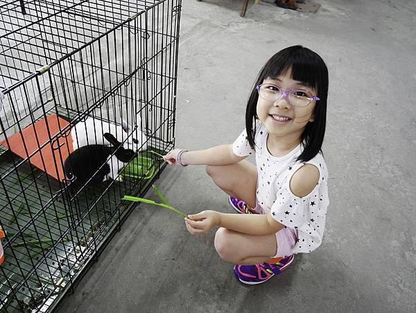 宜蘭 蔥寶寶 體驗農場-9.jpg
