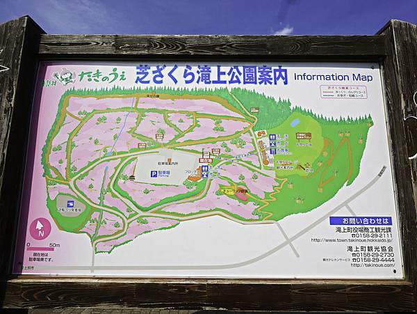 滝上芝櫻公園-5.jpg
