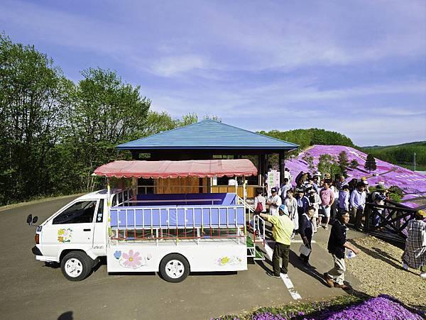 東藻琴芝櫻公園-13.jpg