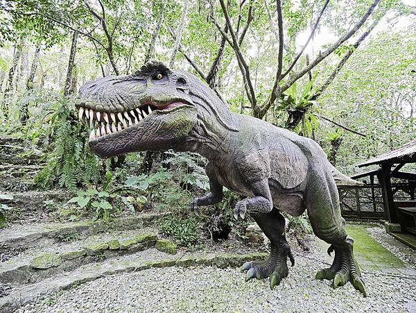 沖繩套票,美麗海,恐龍,名護動物園-6.jpg