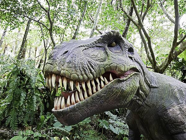 沖繩套票,美麗海,恐龍,名護動物園-7.jpg