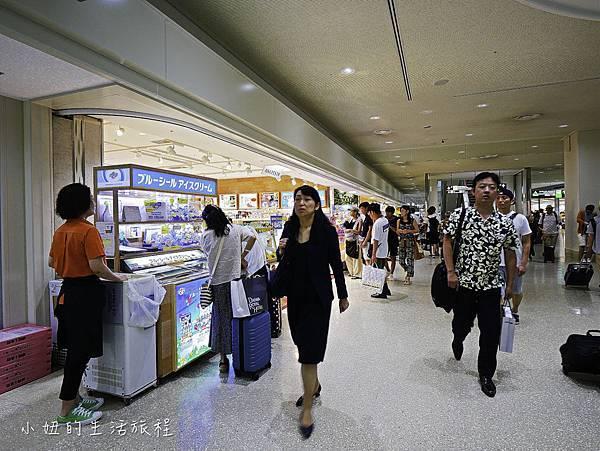 沖繩套票,美麗海,恐龍,名護動物園-8.jpg