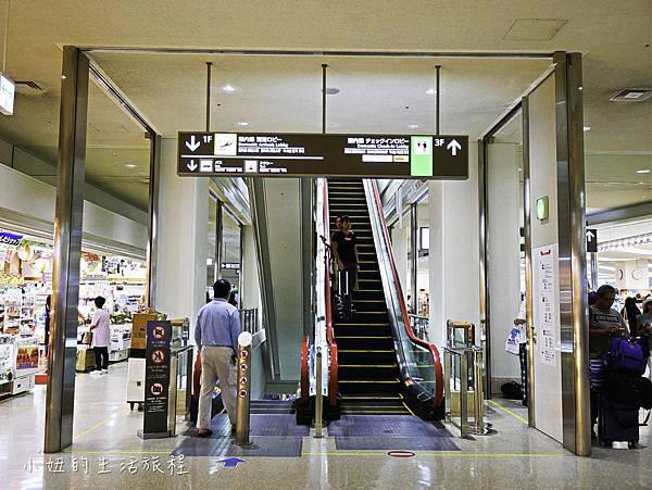沖繩套票,美麗海,恐龍,名護動物園-9.jpg