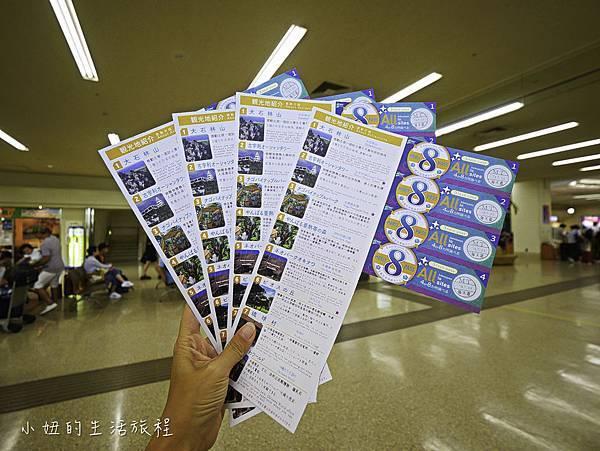 沖繩套票,美麗海,恐龍,名護動物園-11.jpg