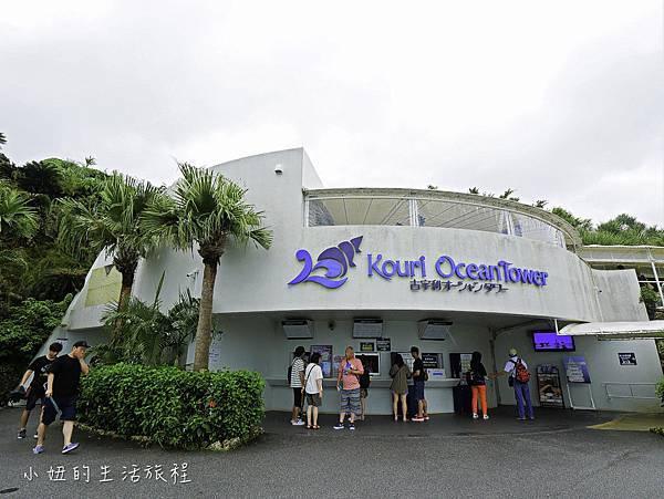 沖繩套票,美麗海,恐龍,名護動物園-20.jpg